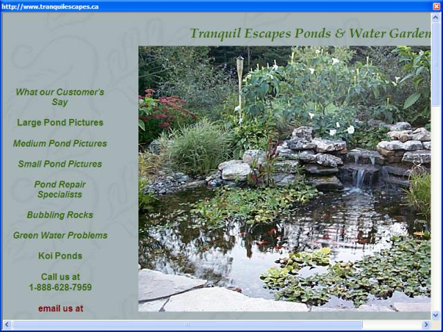 Tranquil Escapes Pond